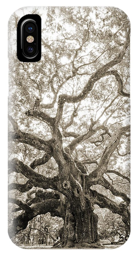 Angel Oak IPhone X Case featuring the photograph Angel Oak Tree Charleston Sc by Dustin K Ryan
