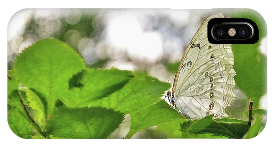 Butterfly IPhone X / XS Case featuring the digital art Angel Wings by Anita Hubbard