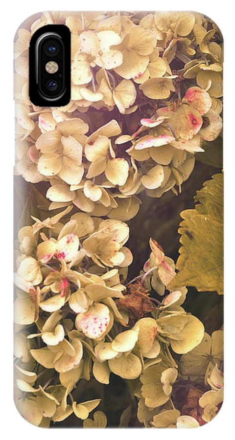 Hydrangea IPhone X Case featuring the photograph Annabelle by JAMART Photography