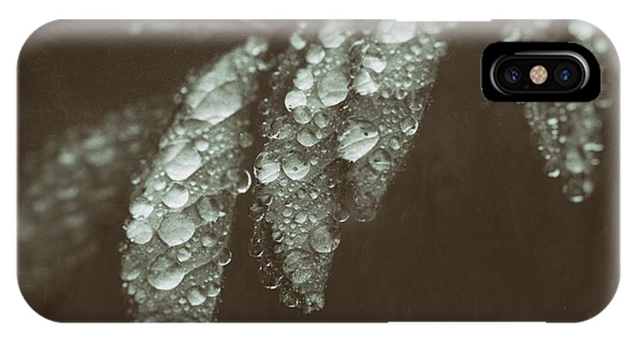 Leaf IPhone X Case featuring the photograph Annointed by C L Lassila