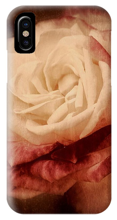 Roses IPhone X Case featuring the photograph Antique Rose - In Full Bloom by Angie Tirado