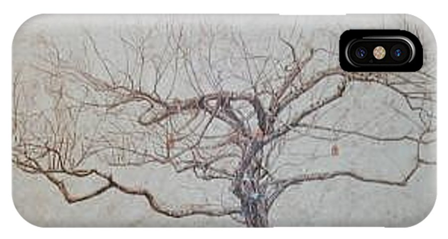 Apple Tree IPhone X Case featuring the painting Apple Tree In Winter by Leah Tomaino