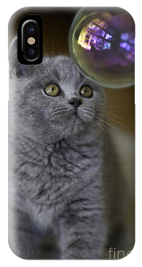 Cat IPhone X Case featuring the photograph Archie With Bubble by Sheila Smart Fine Art Photography