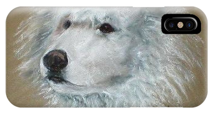 Pastel IPhone Case featuring the drawing Arctic Majestry by Cori Solomon