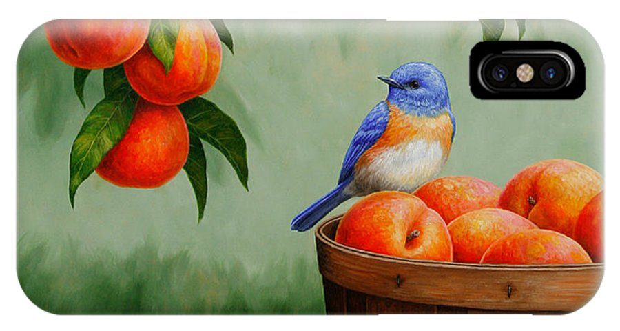 Bird IPhone X / XS Case featuring the painting Bluebird And Peaches Greeting Card 3 by Crista Forest