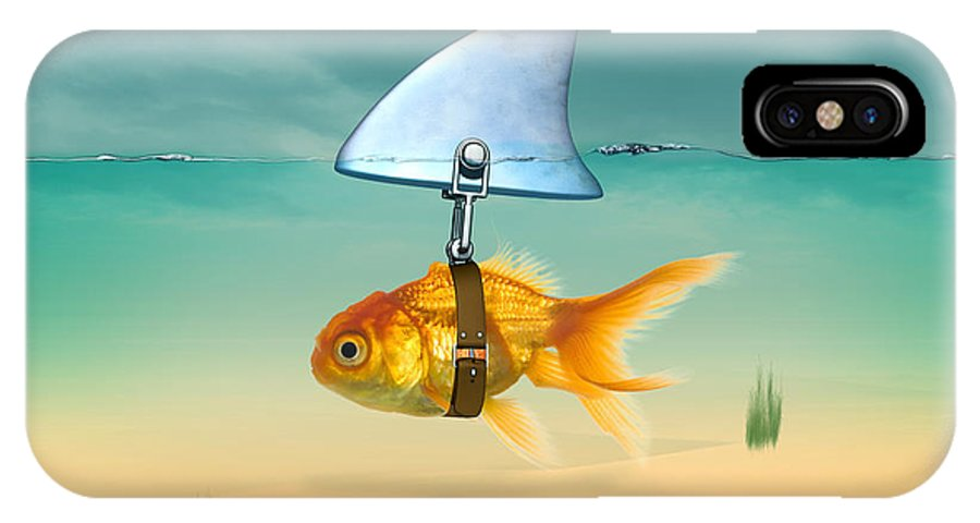 Animals IPhone X Case featuring the painting Gold Fish by Mark Ashkenazi