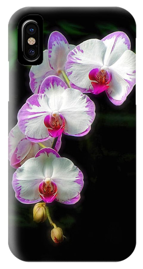 Orchid IPhone X Case featuring the photograph Cascading Orchid Beauties by Sue Melvin