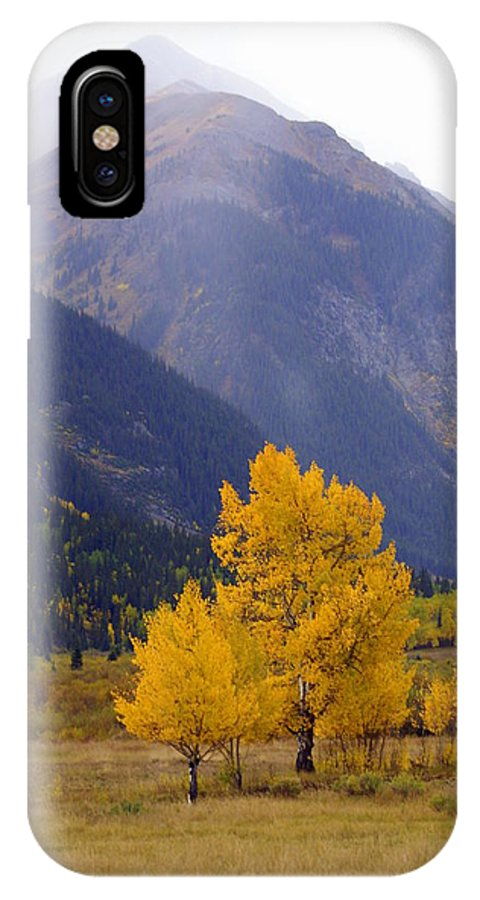 Fall Colors IPhone X Case featuring the photograph Aspen Fall 4 by Marty Koch