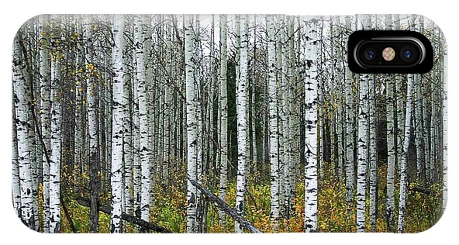 Aspens IPhone X Case featuring the photograph Aspens by Nelson Strong