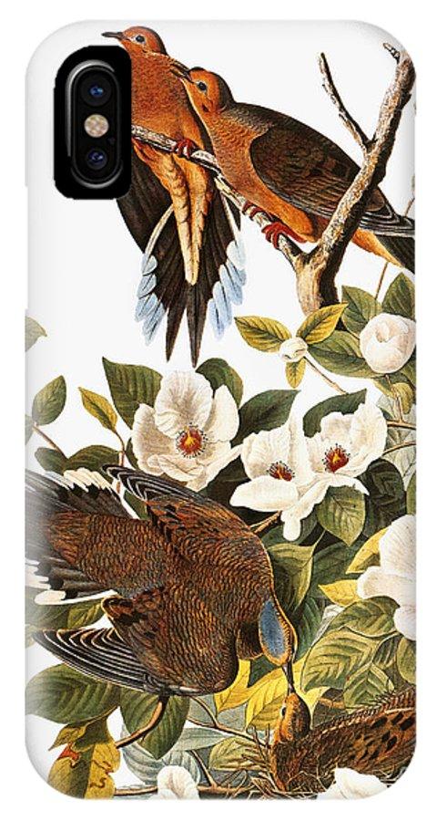 1838 IPhone X Case featuring the photograph Audubon Dove by John James Audubon