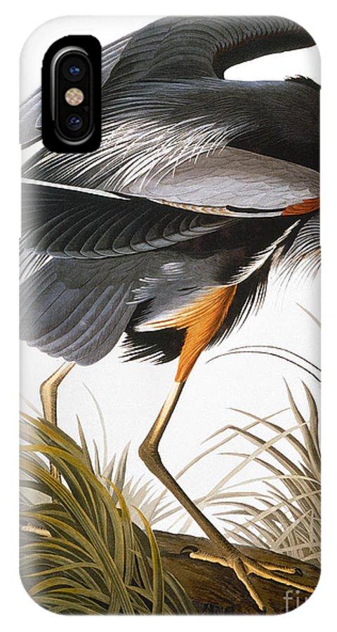 1838 IPhone X Case featuring the photograph Audubon Heron by John James Audubon