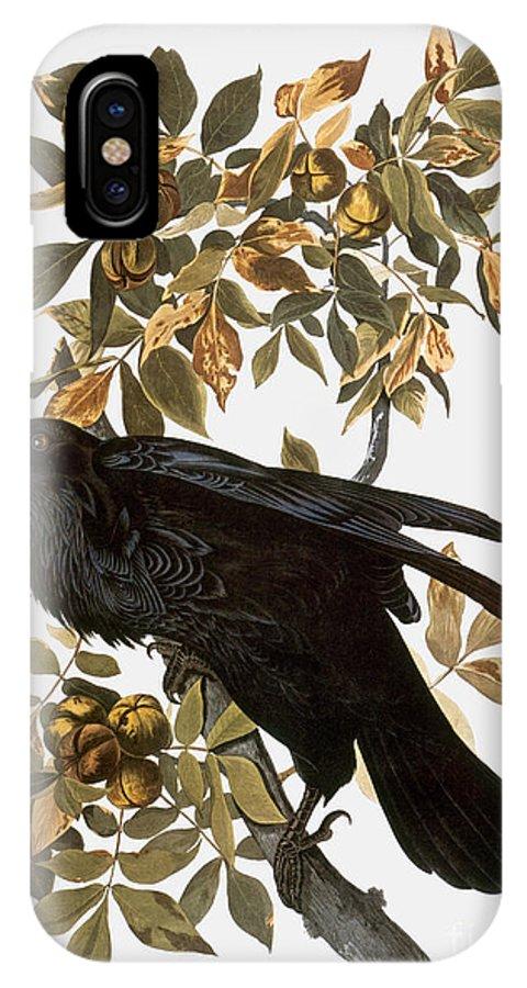 1838 IPhone X Case featuring the photograph Audubon: Raven by Granger