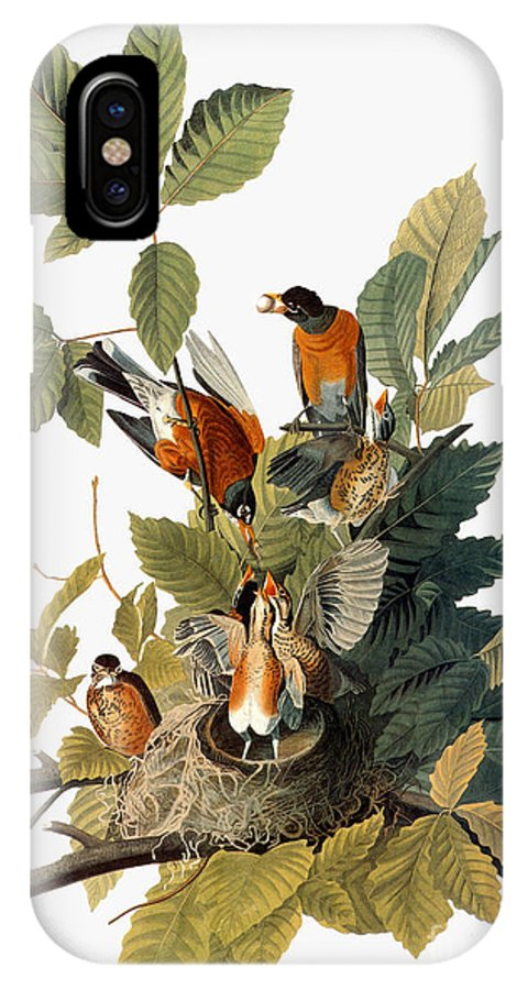 1838 IPhone X Case featuring the photograph Audubon: Robin by Granger