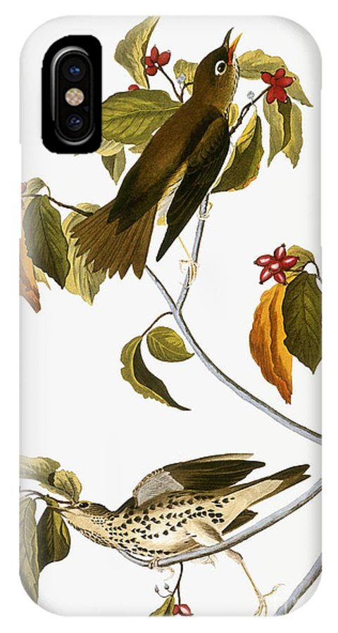 1838 IPhone X Case featuring the photograph Audubon: Thrush by Granger
