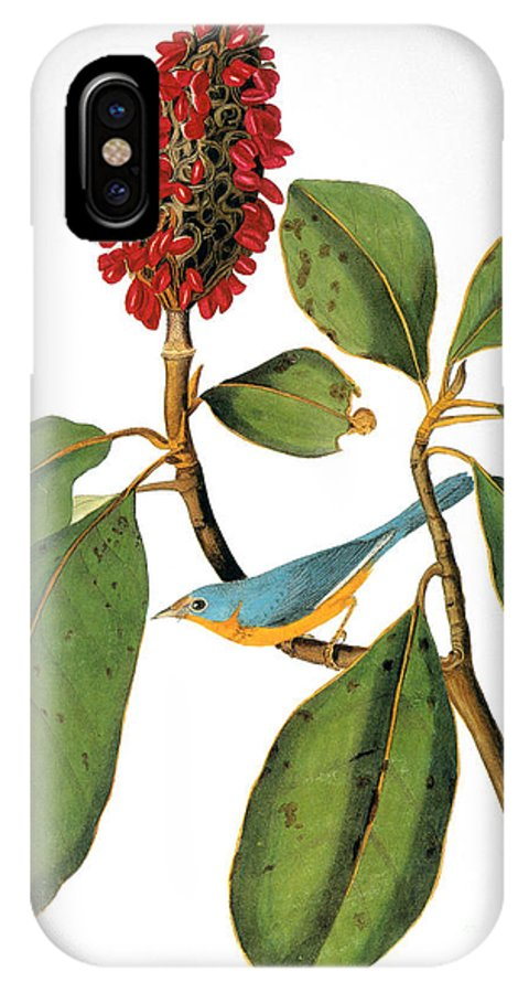 1838 IPhone X Case featuring the photograph Audubon: Warbler by Granger