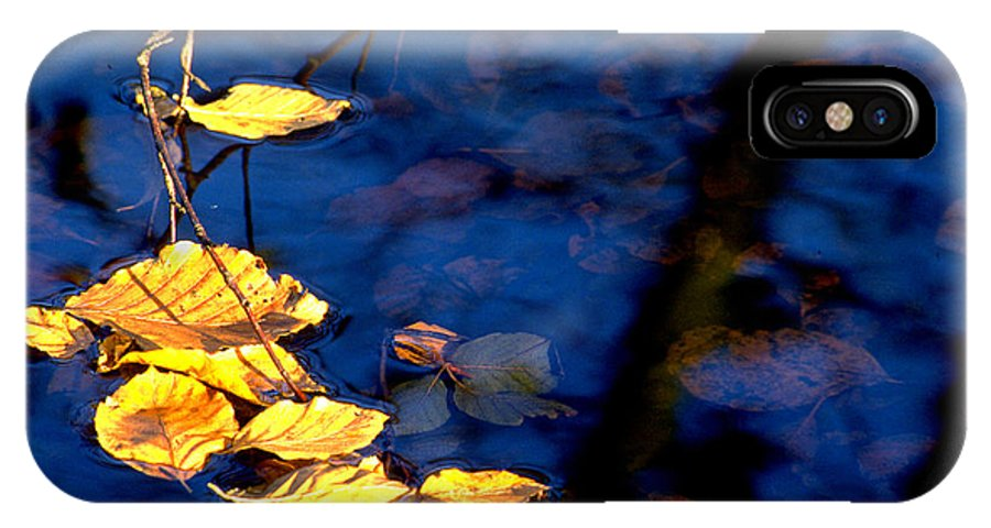 Leaves IPhone X Case featuring the photograph Autum Leaves by Michael Mogensen