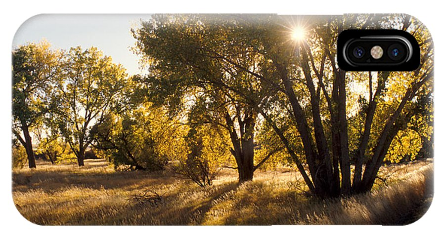 Fall IPhone X Case featuring the photograph Autum Sunburst by Jerry McElroy