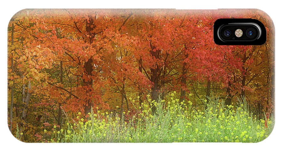 Autumn IPhone X Case featuring the photograph Autumn 3 - 16oct2016 by Jim Vance