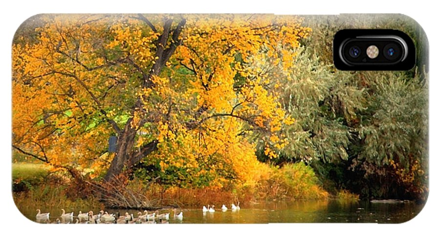 Fall IPhone X Case featuring the photograph Autumn Calm by Carol Groenen