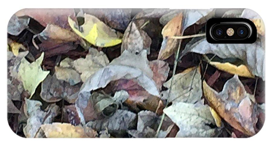 Autumn Carpet IPhone X Case featuring the photograph Autumn Carpet by James Pinkerton