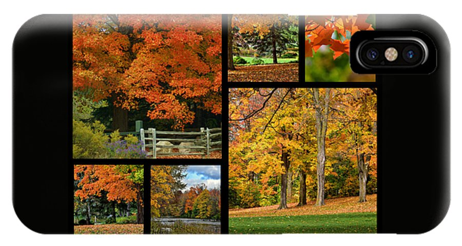 Autumn IPhone X Case featuring the photograph Autumn Collage by Maria Keady