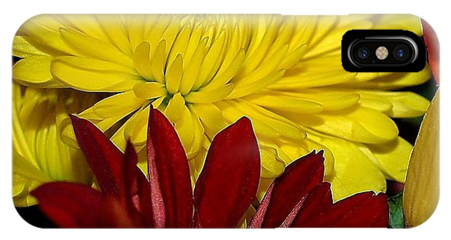 Chrysanthemum Photography IPhone X / XS Case featuring the photograph Autumn Colors by Patricia Griffin Brett