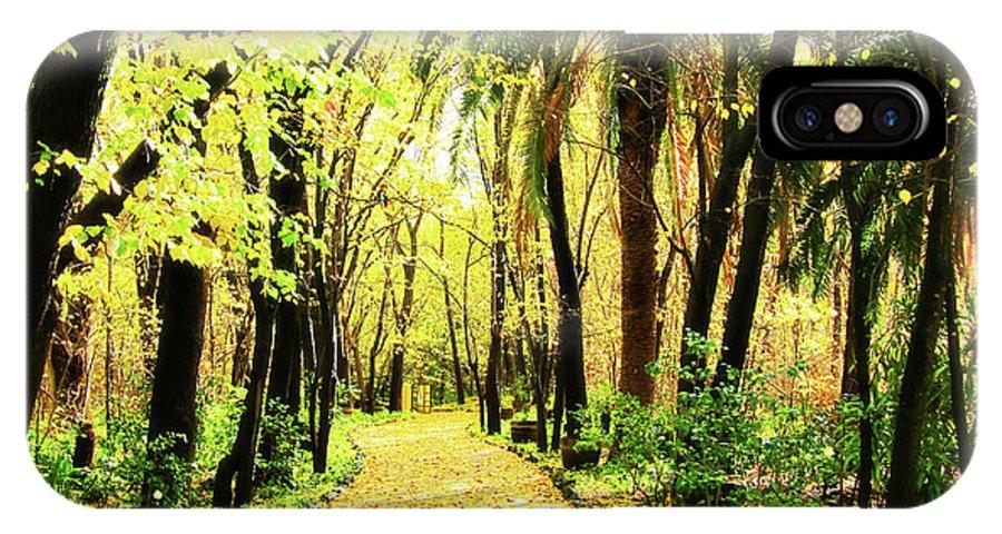 Autumn IPhone X Case featuring the photograph Autumn Corridor by Douglas Barnard