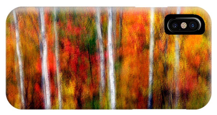 Canada IPhone X Case featuring the photograph Autumn Dreams by Doug Gibbons