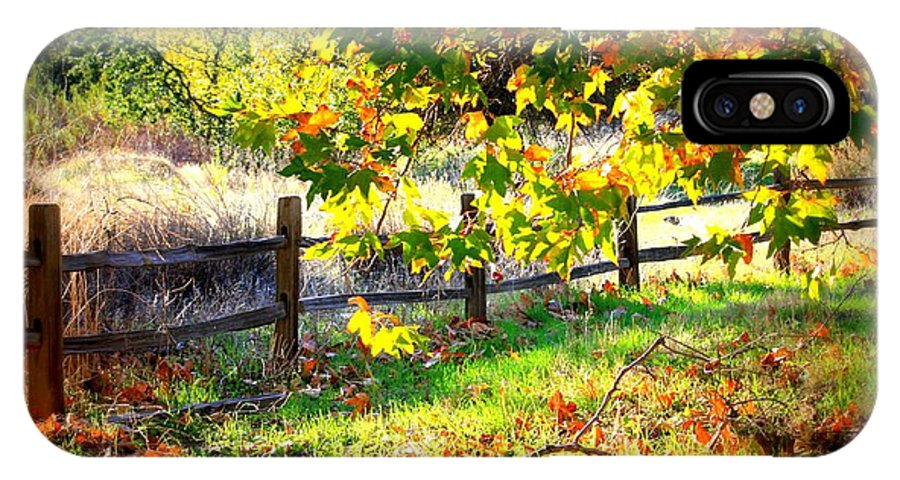 Fences IPhone X Case featuring the photograph Autumn Fence by Carol Groenen