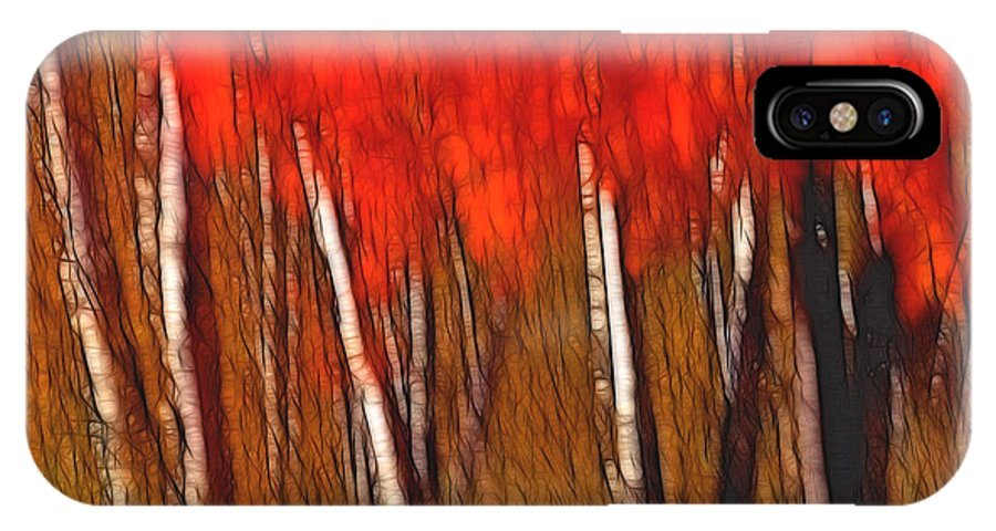 Trees IPhone X Case featuring the photograph Autumn Fire by Bill Morgenstern