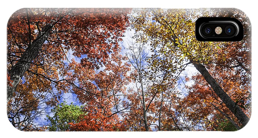 Fall Trees IPhone X Case featuring the photograph Autumn Forest Canopy by Lynn Bauer