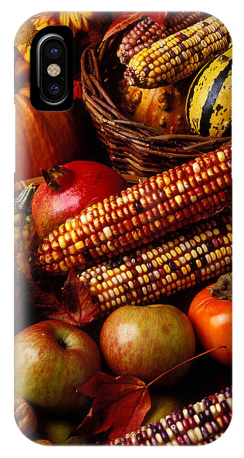 Autumn IPhone X Case featuring the photograph Autumn Harvest by Garry Gay