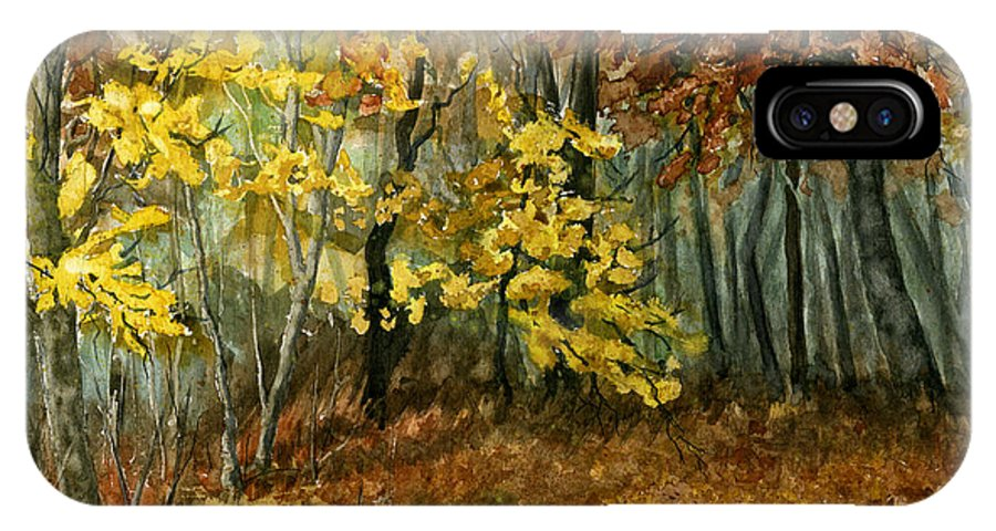 Landscape IPhone X Case featuring the painting Autumn Hollow II by Mary Tuomi