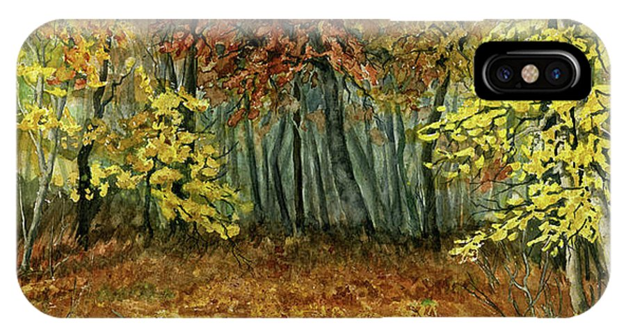 Autumn IPhone Case featuring the painting Autumn Hollow by Mary Tuomi