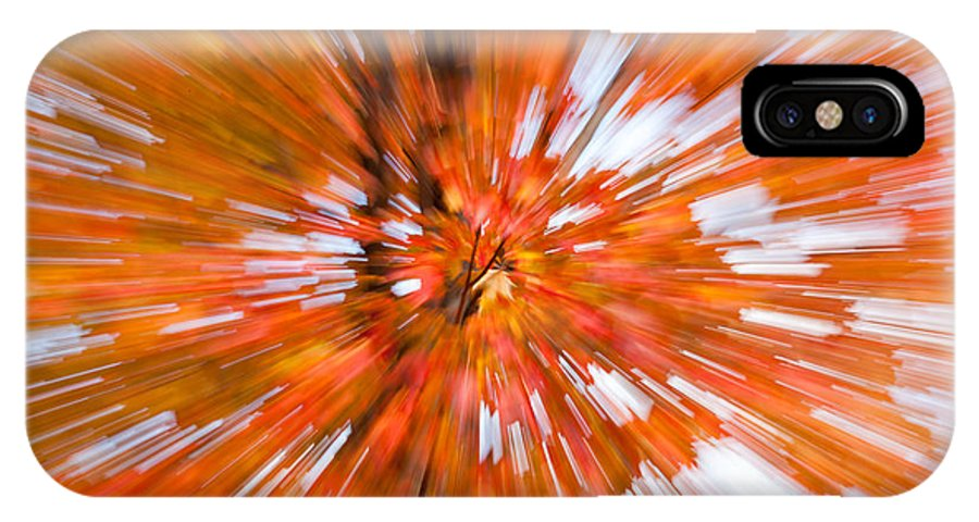 Clarence Holmes IPhone X Case featuring the photograph Autumn Leaves IIi by Clarence Holmes
