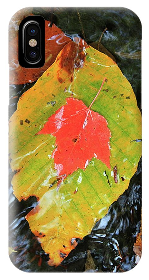 Forest IPhone X Case featuring the photograph Autumn Leaves In Stream by John Burk