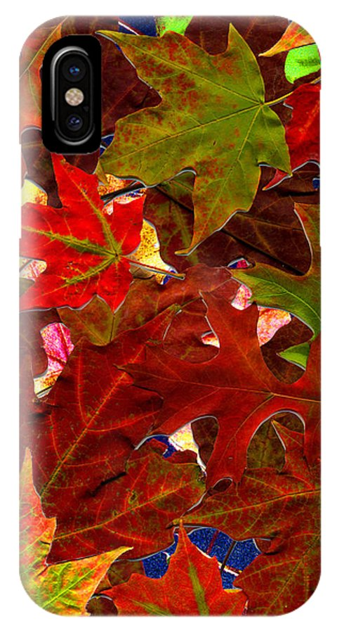 Collage IPhone Case featuring the photograph Autumn Leaves by Nancy Mueller