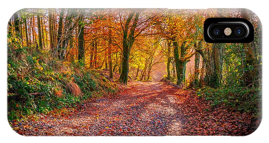 Autumn IPhone X Case featuring the photograph Autumn Light by Liam Mcclean