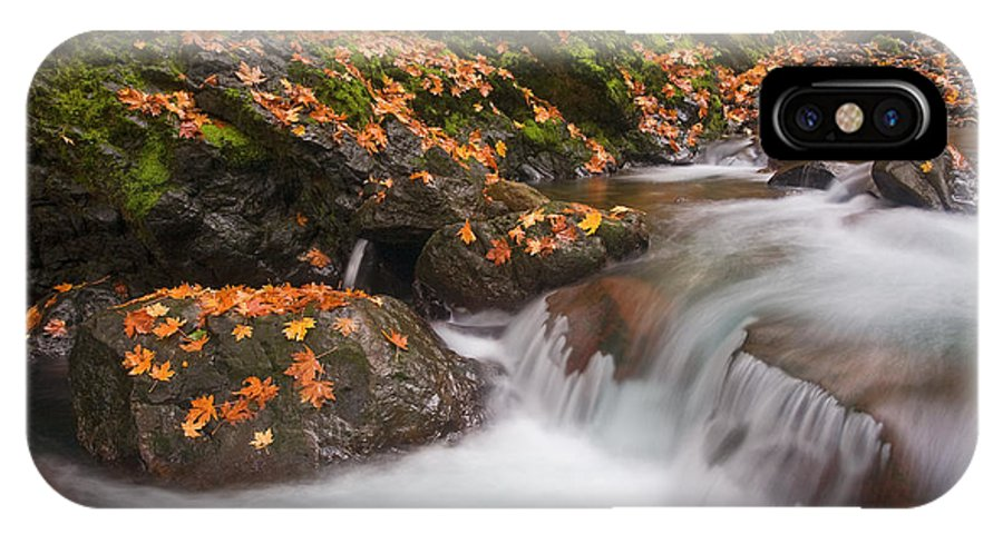 Autumn IPhone X Case featuring the photograph Autumn Litter by Mike Dawson