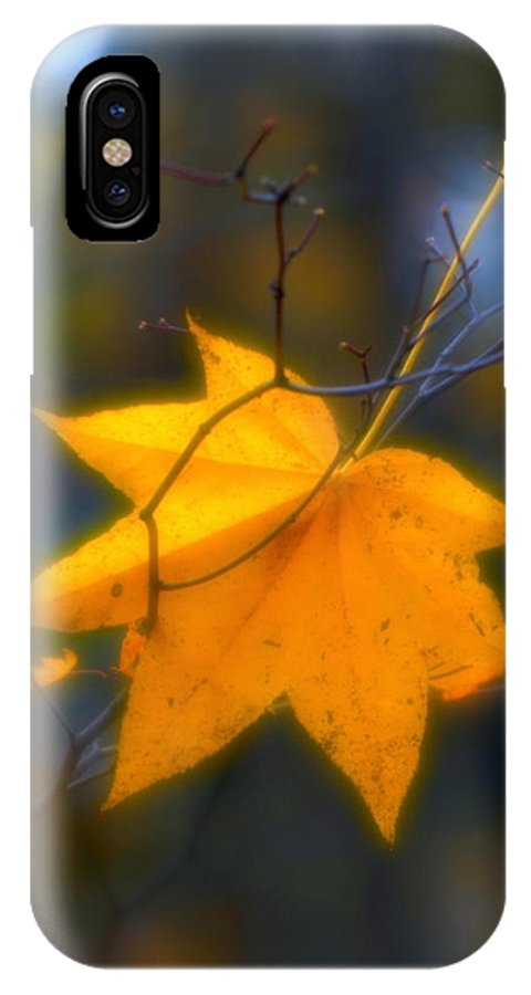 Soft IPhone X Case featuring the photograph Autumn Maple Leaf by Igor Malinovskii