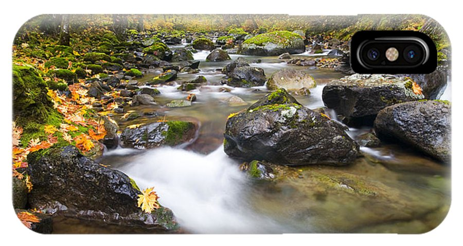 Fall IPhone X Case featuring the photograph Autumn Passing by Mike Dawson