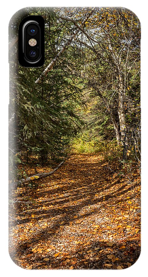 Autumn IPhone X Case featuring the photograph Autumn Path In Spearfish Canyon by Ray Van Gundy
