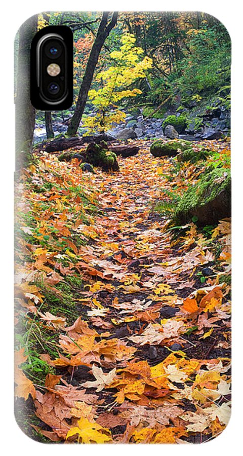 Path IPhone X Case featuring the photograph Autumn Path by Mike Dawson