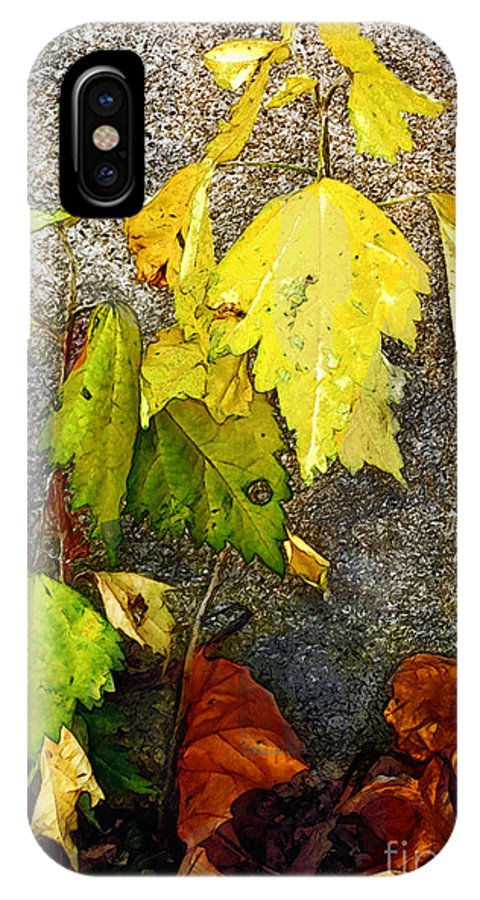 Autumn IPhone X Case featuring the painting Autumn Rainbow by RC DeWinter