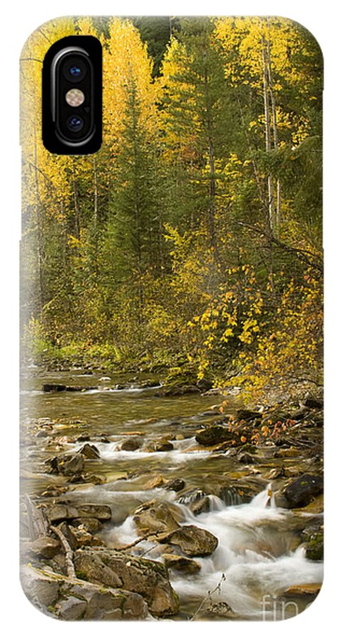 Idaho IPhone Case featuring the photograph Autumn Stream by Idaho Scenic Images Linda Lantzy