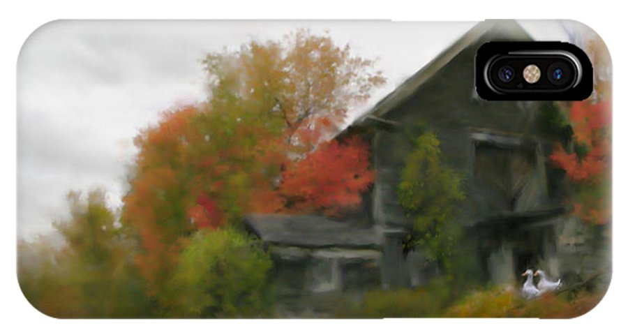 Nature IPhone X Case featuring the painting Autumn Stroll by Stephen Lucas