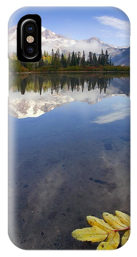 Rainier IPhone Case featuring the photograph Autumn Suspended by Mike Dawson