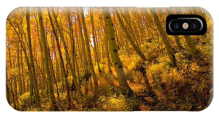 Autumn IPhone X Case featuring the photograph Autumn Trail by David Lee Thompson