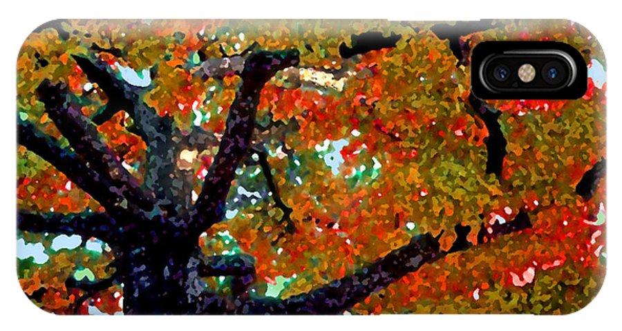 Fall IPhone Case featuring the photograph Autumn Tree by Steve Karol