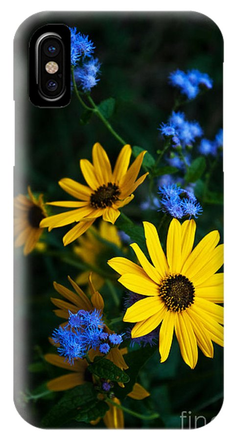Wildflowers IPhone X Case featuring the photograph Autumn Wildflowers by Lisa Porier